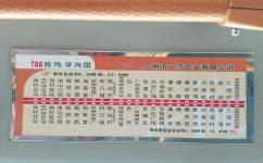 广州788路公交车路线