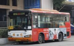 广州番96路公交车路线