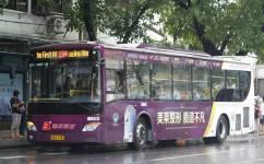 广州194路公交车路线
