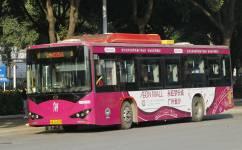 广州429路公交车路线