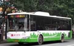 广州205路公交车路线
