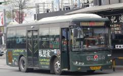 广州番56路公交车路线