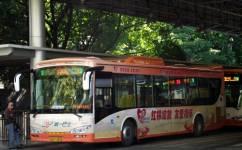 广州133路公交车路线