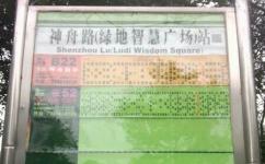 神舟路(绿地智慧广场)公交站