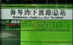 海琴湾总站(下渡路)公交站