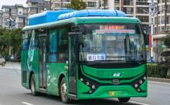 桂林愚自专线 (定班)公交车路线