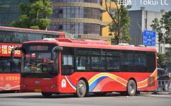 桂林83路公交车路线