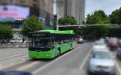 贵阳229路公交车路线