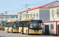 哈尔滨81路公交车路线