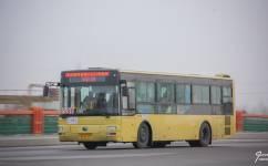 哈尔滨331路公交车路线