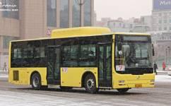 哈尔滨7路公交车路线