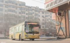 哈尔滨209路公交车路线