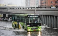 哈尔滨31路公交车路线