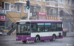 哈尔滨呼兰5路公交车路线