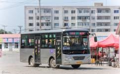 哈尔滨阿城31路公交车路线