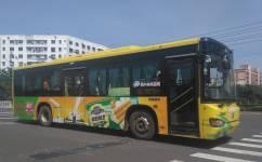 海口43路公交车路线