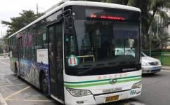 海口11路公交车路线