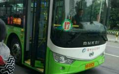 海口17路公交车路线