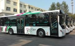菏泽1路公交车路线