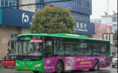 淮南K29路公交车路线