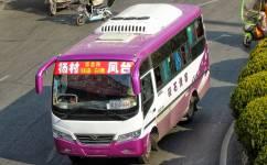 淮南凤台-白塘-杨村公交车路线