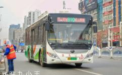 淮南310路公交车路线