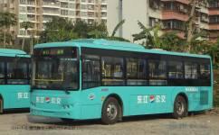 惠州203路公交车路线