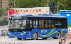 惠州323路公交车路线