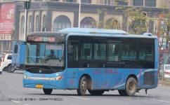 惠州31路公交车路线