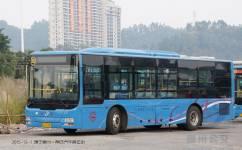 惠州20路公交车路线