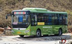 惠州博罗222路公交车路线