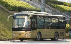 惠州236路公交车路线