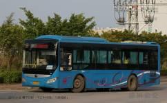 惠州9路公交车路线