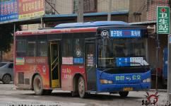 惠州331路公交车路线