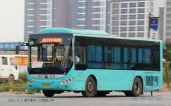 惠州206路公交车路线