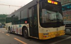 江门8路公交车路线