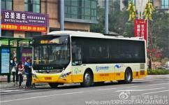 江门6路公交车路线