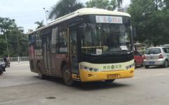 江门805路公交车路线