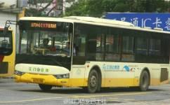 江门117路公交车路线