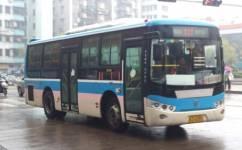 江门531路公交车路线