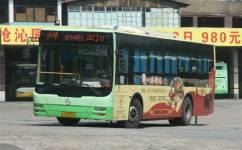 江门江海--沙坪线公交车路线
