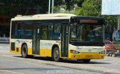 江门103路公交车路线