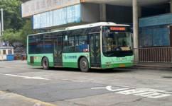 江门101路公交车路线