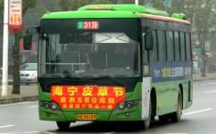 景德镇31路公交车路线