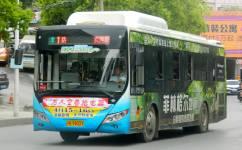 景德镇1路公交车路线