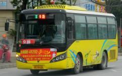 景德镇9路公交车路线