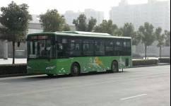 靖江101路公交车路线