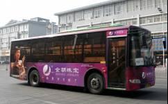 靖江221路公交车路线
