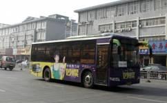 靖江227路公交车路线