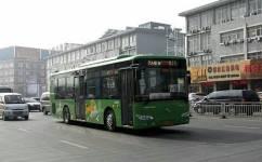 靖江223路公交车路线
